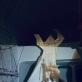 videokadras iš parodoje rodomų filmų