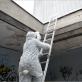 """Aurelijos Maknytės paroda """"Gamtos kabinetai"""" (instaliacija)"""