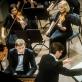 Koncerto Muzikos dienai akimirka. D. Matvejevo nuotr.