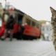 """Stambulo katės"""