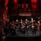 Šv. Kristoforo kamerinis orkestras, dirigentas Modestas Barkauskas. L. Mataičio nuotr.