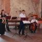 Vaidos Striaupaitės-Beinarienės koncerto akimirka. S. Nemeikaitės nuotr.