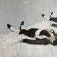 """Viktoras Paukštelis, """"Miegantis matadoras"""". 2020 m. Autorės nuotr."""