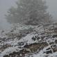 Monte Vettore, nuotr. P. Šliaupos