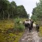 Nomads. 16.07.21. Fotografavo Milda Laužikaitė