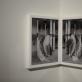 "Shane Lavalette parodos ""One Sun, One Shadow"" ekspozicija. V. Paplausko nuotr."