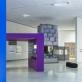"""Parodos """"Rūšių atsiradimas: 90-ųjų DNR"""" MO muziejuje fragmentas. N. Tukaij nuotr."""