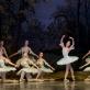 """Olesia Šaitanova balete """"Miegančioji gražuolė"""". M. Aleksos nuotr."""