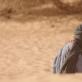 """Kadras iš filmo """"Timbuktu"""""""