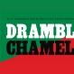 """Susitikimas su parodos """"Drambliai ir chameleonai""""menininkais ir nauju leidiniu"""