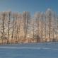 Paliesiaus dvaro žiemos repertuaras – įvairiems skoniams