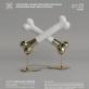 """Tarptautinis kaulinio porceliano simpoziumas """"Porceliano tapatybė"""""""