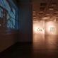 Donato Bielkausko koncertas ir susitikimas su menininkais parodoje EXOPLANETA