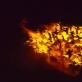 """Artūras Raila """"Metalo pjūklas degančiam medžiui"""""""