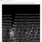 Rūta Mickienė Informacija, prieš tapdama materiali, egzistuoja bangų ir virpesių pavidalu.<i>www.atvira.info</i>